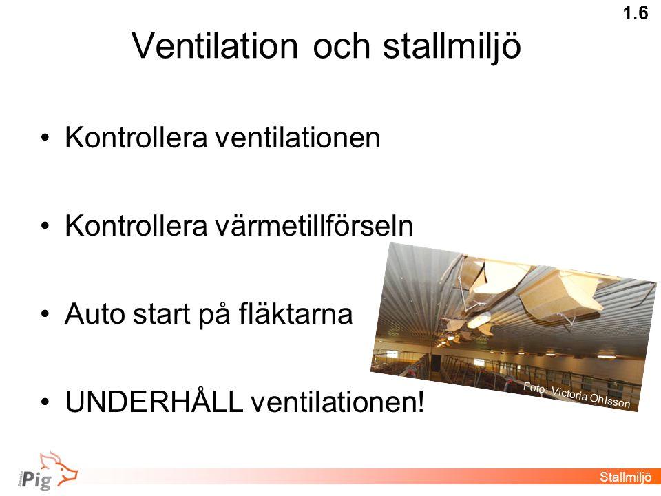 Ventilation och stallmiljö •Kontrollera ventilationen •Kontrollera värmetillförseln •Auto start på fläktarna •UNDERHÅLL ventilationen! Stallmiljö 1.6