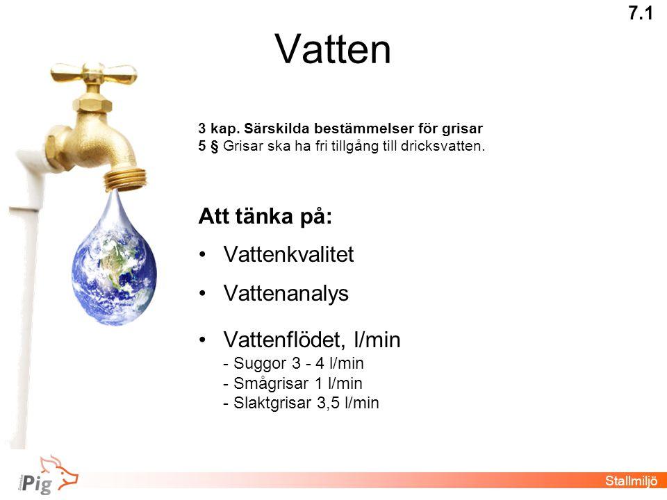 Vatten 3 kap. Särskilda bestämmelser för grisar 5 § Grisar ska ha fri tillgång till dricksvatten. Att tänka på: •Vattenkvalitet •Vattenanalys •Vattenf