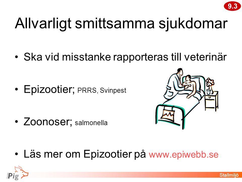 Allvarligt smittsamma sjukdomar •Ska vid misstanke rapporteras till veterinär •Epizootier; PRRS, Svinpest •Zoonoser; salmonella •Läs mer om Epizootier på www.epiwebb.se 9.3 Stallmiljö