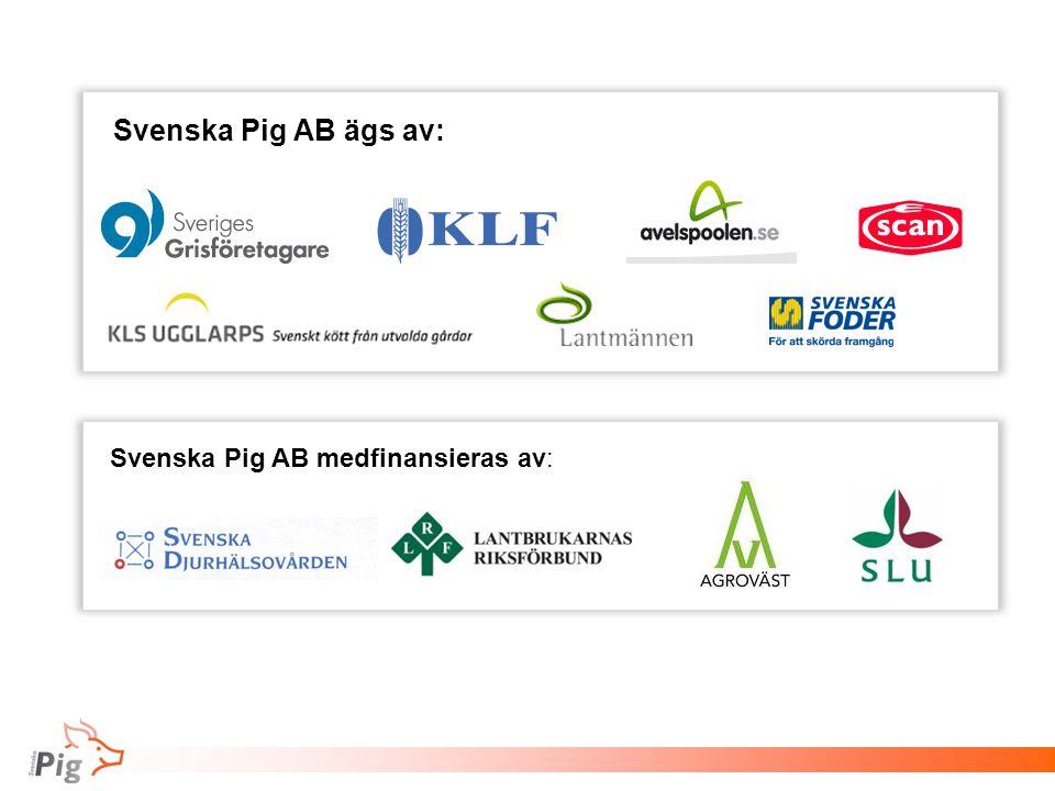 Svenska Pig AB ägs av: Svenska Pig AB medfinansieras av: