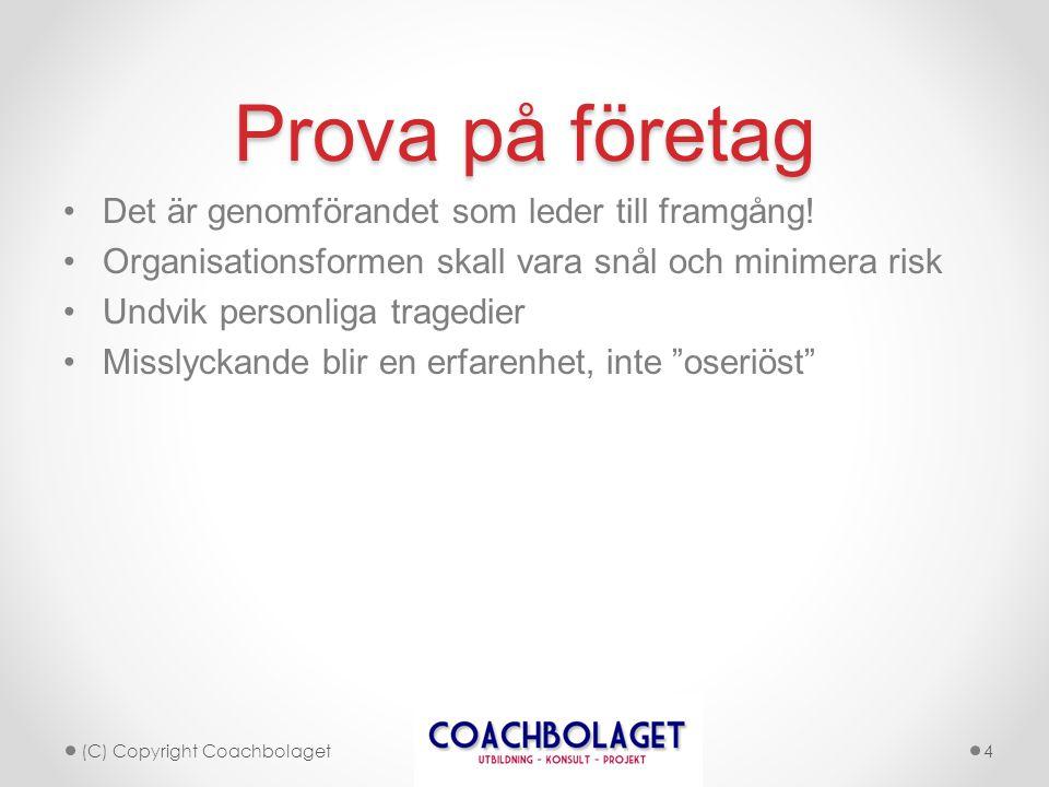 Prova på företag •Det är genomförandet som leder till framgång! •Organisationsformen skall vara snål och minimera risk •Undvik personliga tragedier •M