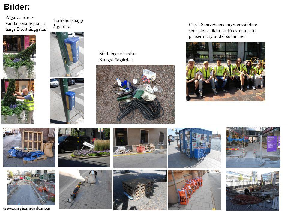 Bilder: City i Samverkans ungdomsstädare som plockstädat på 16 extra utsatta platser i city under sommaren.