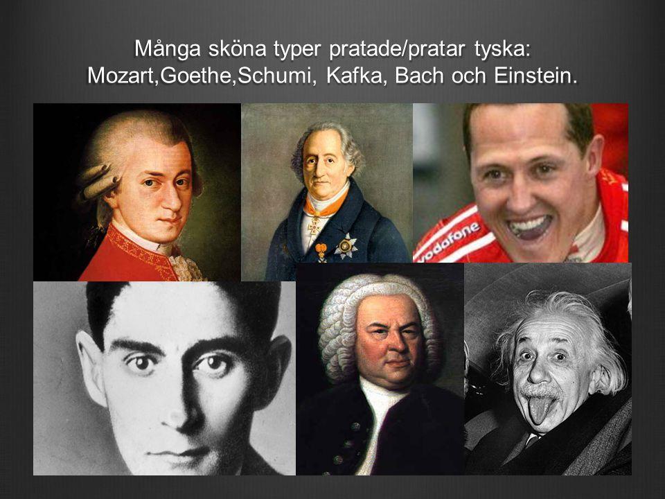 Många sköna typer pratade/pratar tyska: Mozart,Goethe,Schumi, Kafka, Bach och Einstein.