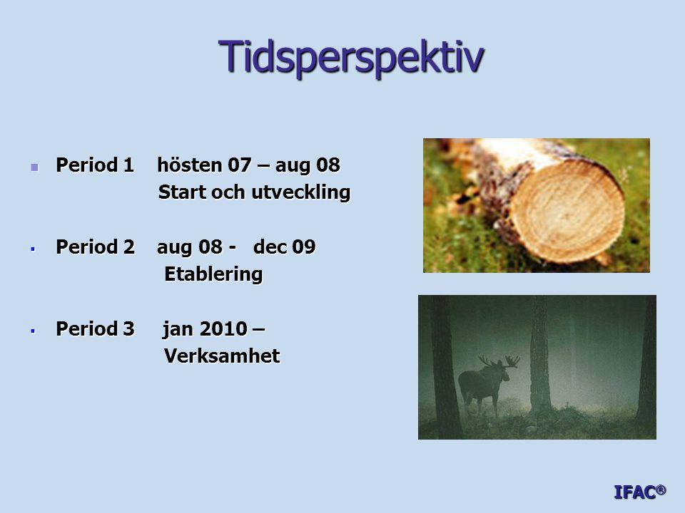 Tidsperspektiv  Period 1 hösten 07 – aug 08 Start och utveckling Start och utveckling  Period 2 aug 08 - dec 09 Etablering Etablering  Period 3 jan