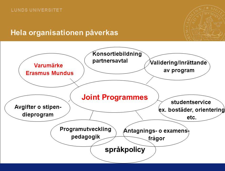 12 L U N D S U N I V E R S I T E T Hela organisationen påverkas Joint Programmes Programutveckling pedagogik Validering/Inrättande av program Varumärk