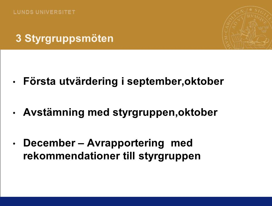 16 L U N D S U N I V E R S I T E T 3 Styrgruppsmöten • Första utvärdering i september,oktober • Avstämning med styrgruppen,oktober • December – Avrapportering med rekommendationer till styrgruppen
