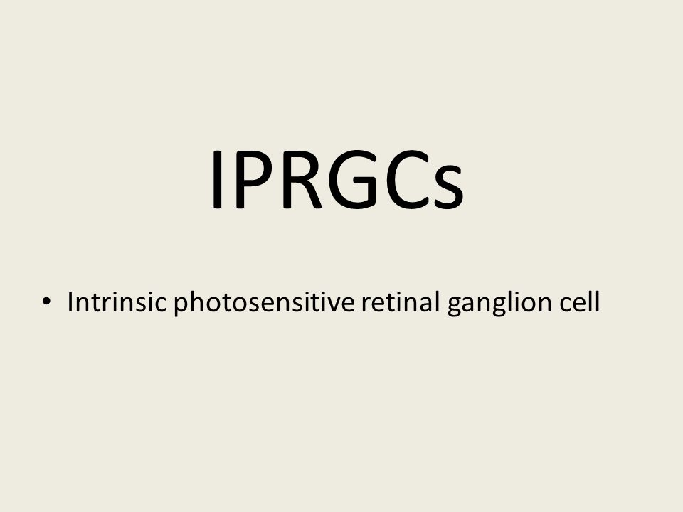 IPRGCs • Intrinsic photosensitive retinal ganglion cell