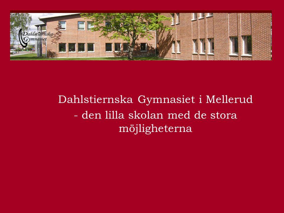 Dahlstiernska Gymnasiet i Mellerud - den lilla skolan med de stora möjligheterna