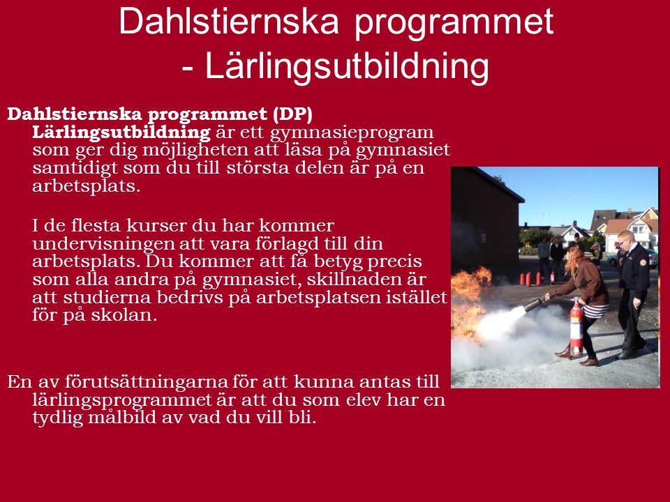 Estetiska programmet – inriktning musik Estetiska programmet (ES) inriktning musik är ett nationellt gymnasieprogram som både är studieförberedande och yrkesorienterande.