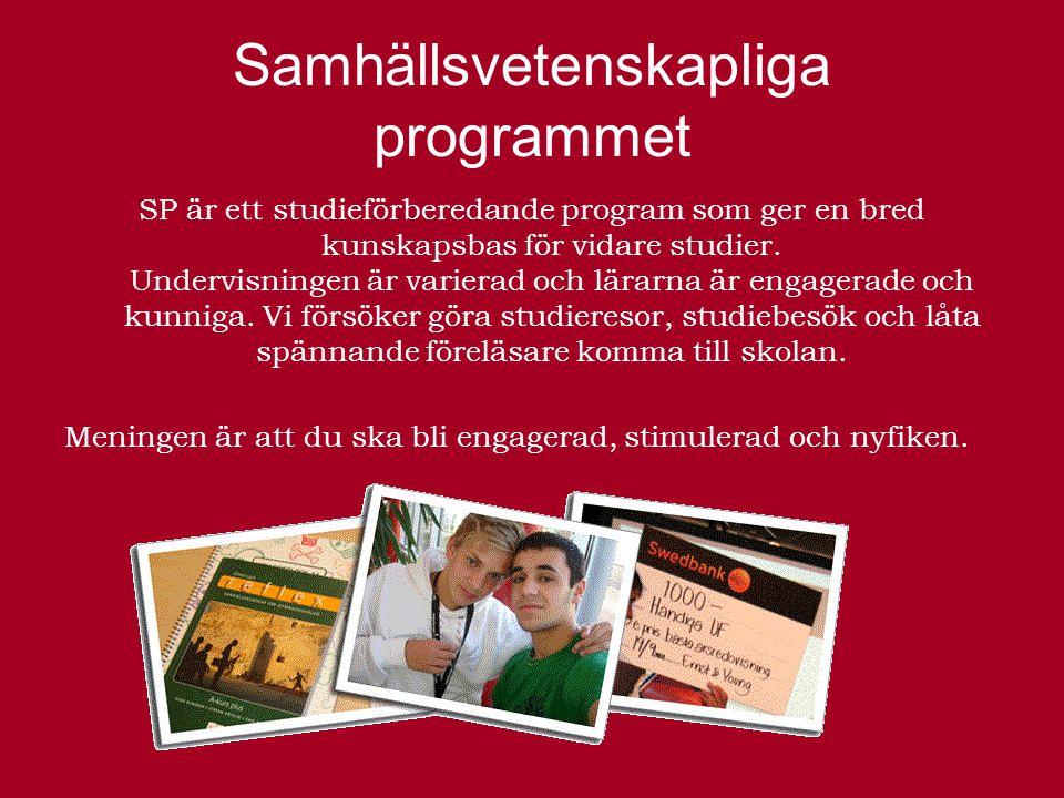 Samhällsvetenskapliga programmet SP är ett studieförberedande program som ger en bred kunskapsbas för vidare studier.