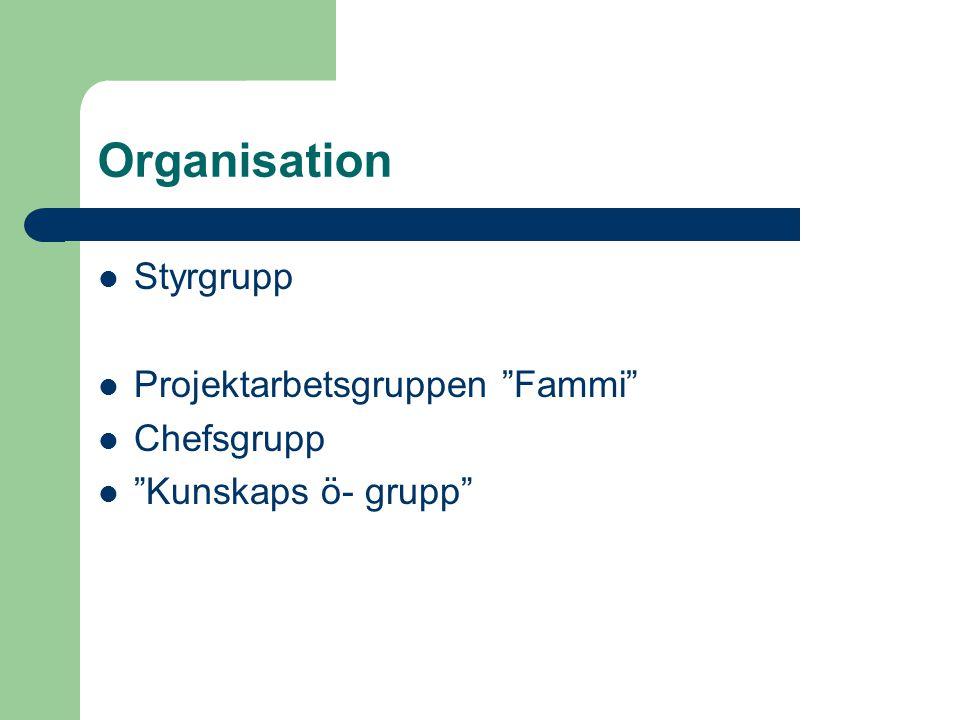 """Organisation  Styrgrupp  Projektarbetsgruppen """"Fammi""""  Chefsgrupp  """"Kunskaps ö- grupp"""""""
