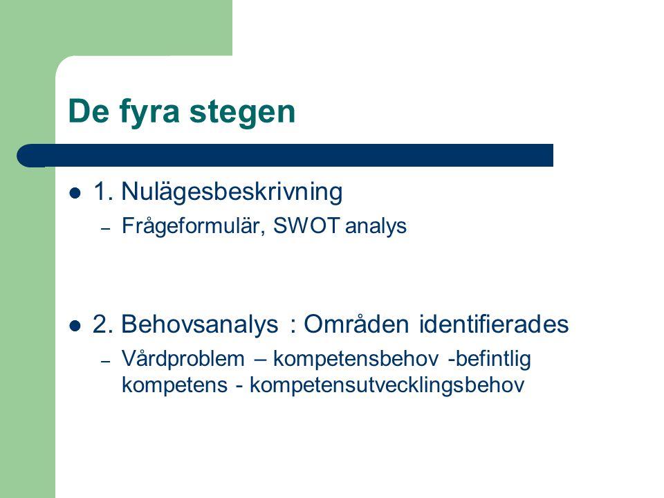 De fyra stegen  1. Nulägesbeskrivning – Frågeformulär, SWOT analys  2. Behovsanalys : Områden identifierades – Vårdproblem – kompetensbehov -befintl