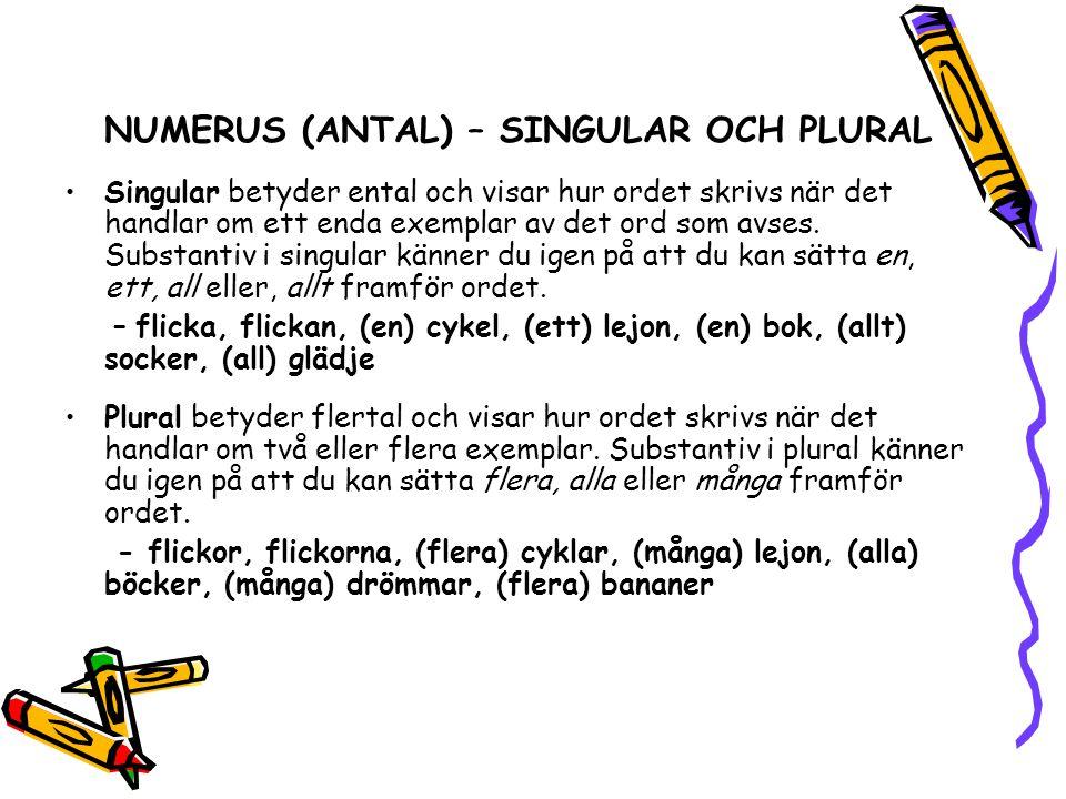 NUMERUS (ANTAL) – SINGULAR OCH PLURAL •Singular betyder ental och visar hur ordet skrivs när det handlar om ett enda exemplar av det ord som avses. Su