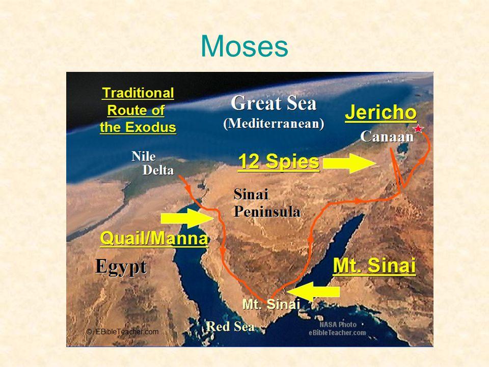 Moses •Befriar det judiska folket från fångenskapen i Egypten och leder dem till Abrahams land.