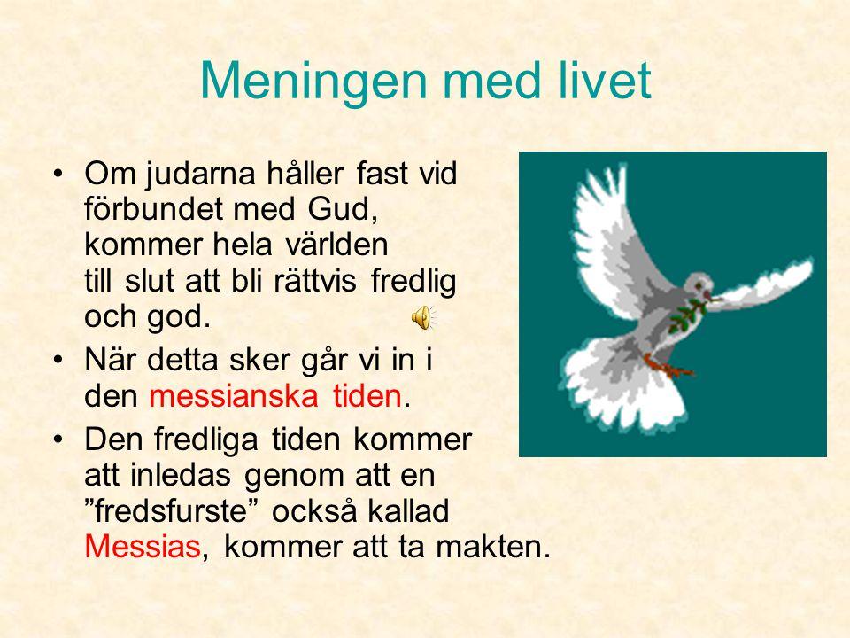 """Meningen med livet •Livsuppgift att vara """"Guds vittnen"""" bland jordens alla folkslag. •De ska visa och förklara vad Gud vill till andra folk. •Judarna"""