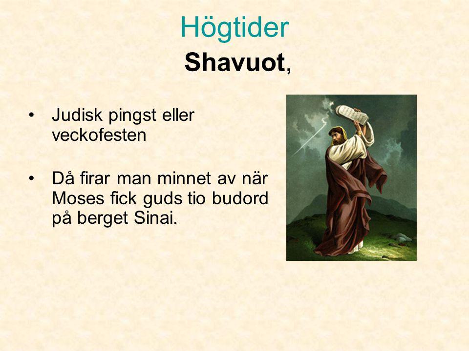 Högtider Pesach • Under sedermåltiden sjunger man och berättar berättelser ur Haggada.