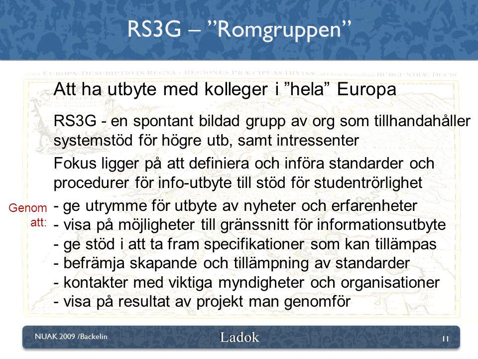 "11 NUAK 2009 /Backelin RS3G – ""Romgruppen"" Att ha utbyte med kolleger i ""hela"" Europa RS3G - en spontant bildad grupp av org som tillhandahåller syste"