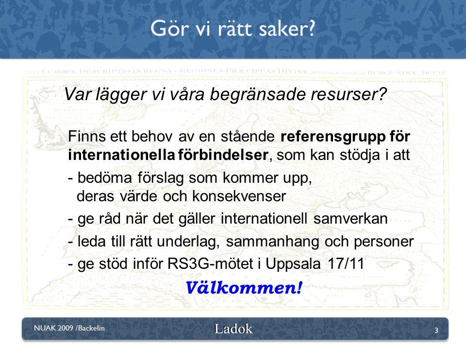 3 NUAK 2009 /Backelin Var lägger vi våra begränsade resurser? Finns ett behov av en stående referensgrupp för internationella förbindelser, som kan st