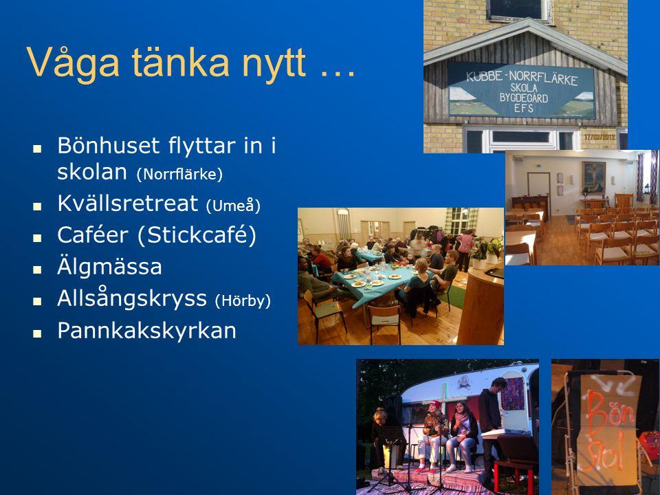 Våga tänka nytt …   Bönhuset flyttar in i skolan (Norrflärke)   Kvällsretreat (Umeå)   Caféer (Stickcafé)   Älgmässa   Allsångskryss (Hörby)   Pannkakskyrkan
