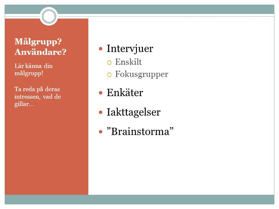 Målgrupp? Användare? Lär känna din målgrupp! Ta reda på deras intressen, vad de gillar…  Intervjuer  Enskilt  Fokusgrupper  Enkäter  Iakttagelser