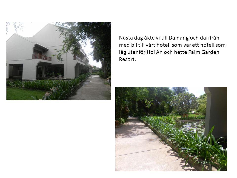 Nästa dag åkte vi till Da nang och därifrån med bil till vårt hotell som var ett hotell som låg utanför Hoi An och hette Palm Garden Resort.