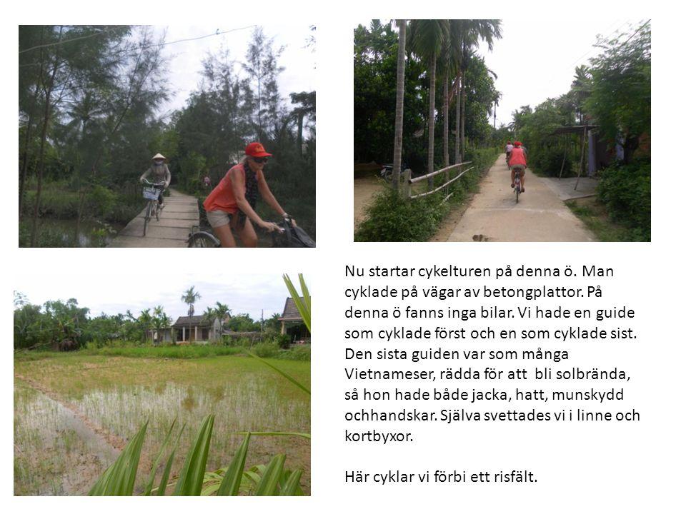 Nu startar cykelturen på denna ö. Man cyklade på vägar av betongplattor. På denna ö fanns inga bilar. Vi hade en guide som cyklade först och en som cy