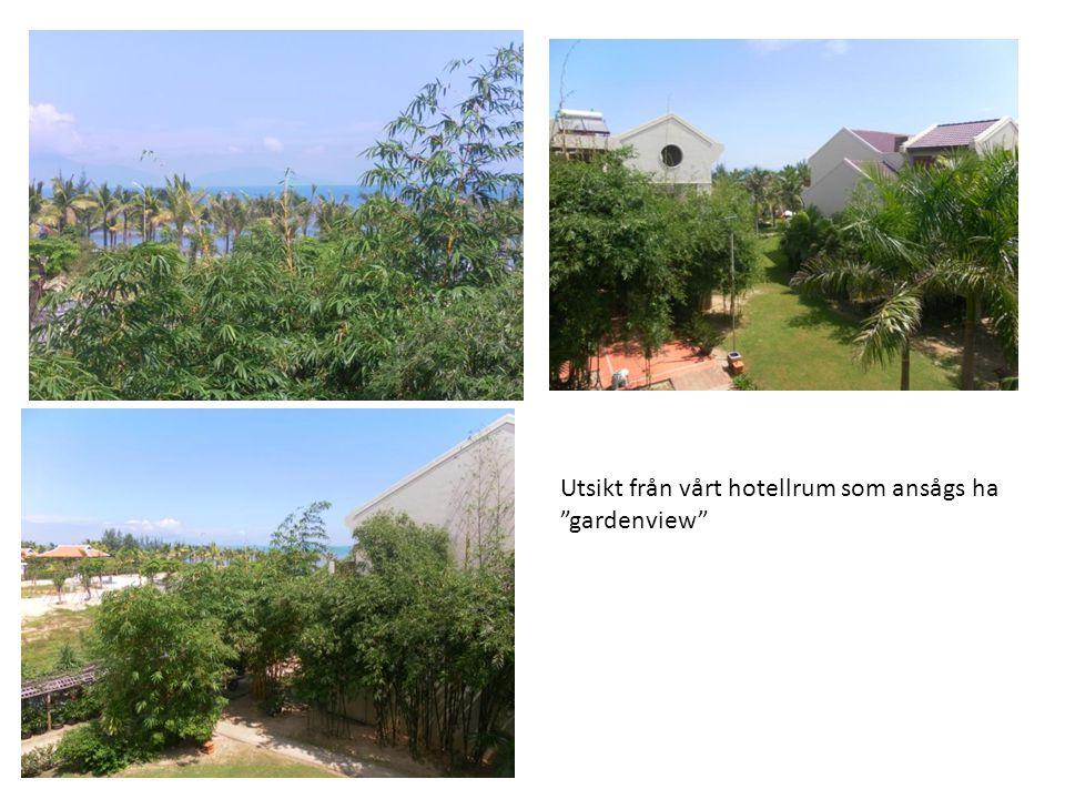 """Utsikt från vårt hotellrum som ansågs ha """"gardenview"""""""