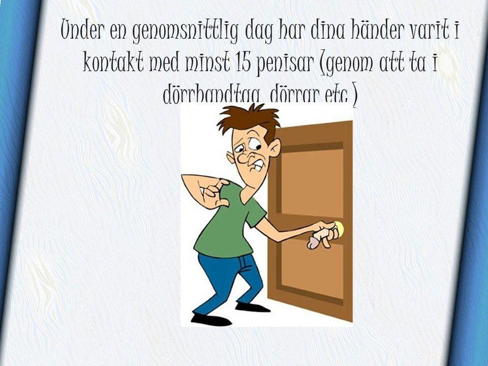 Under en genomsnittlig dag har dina händer varit i kontakt med minst 15 penisar (genom att ta i dörrhandtag, dörrar etc.)