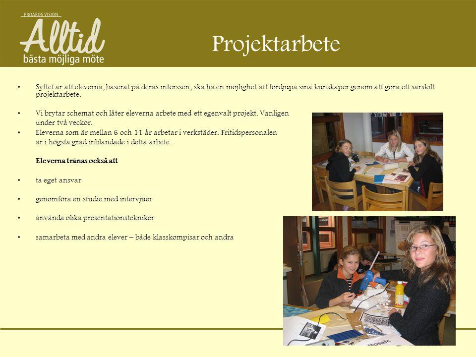 Projektarbete •Syftet är att eleverna, baserat på deras interssen, ska ha en möjlighet att fördjupa sina kunskaper genom att göra ett särskilt projekt