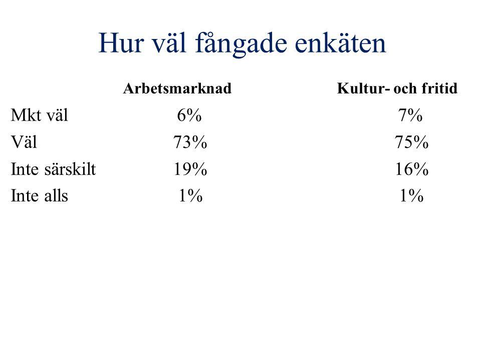 Hur väl fångade enkäten Arbetsmarknad Kultur- och fritid Mkt väl 6% 7% Väl 73% 75% Inte särskilt 19% 16% Inte alls 1% 1%