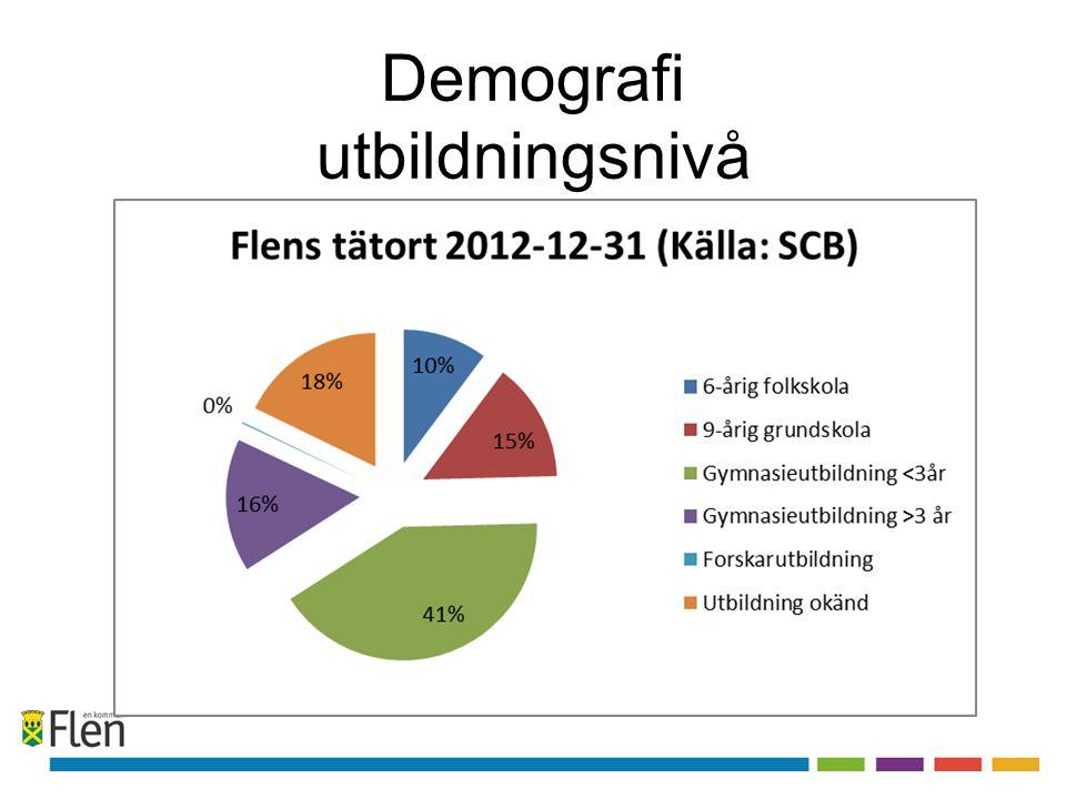Demografi utbildningsnivå