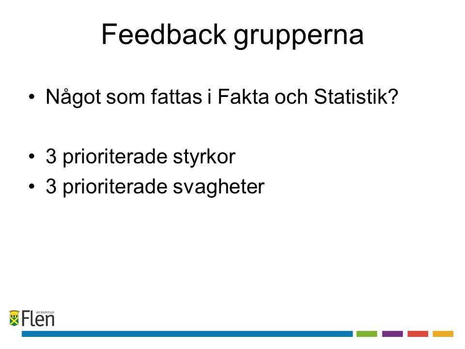Feedback grupperna •Något som fattas i Fakta och Statistik? •3 prioriterade styrkor •3 prioriterade svagheter