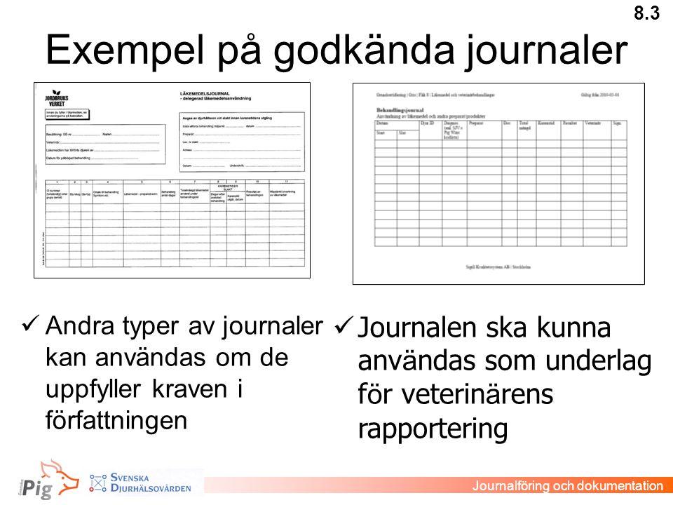 Exempel på godkända journaler  Andra typer av journaler kan användas om de uppfyller kraven i författningen  Journalen ska kunna anv ä ndas som unde