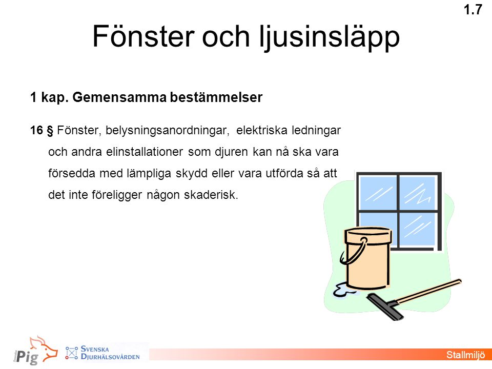 Fönster och ljusinsläpp 1 kap. Gemensamma bestämmelser 16 § Fönster, belysningsanordningar, elektriska ledningar och andra elinstallationer som djuren