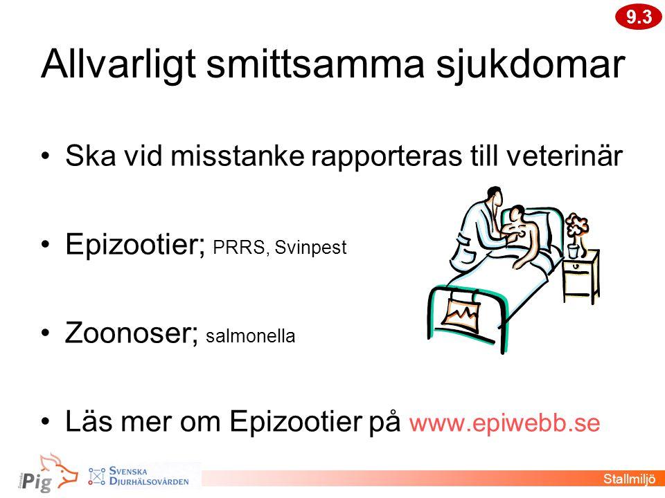 Allvarligt smittsamma sjukdomar •Ska vid misstanke rapporteras till veterinär •Epizootier; PRRS, Svinpest •Zoonoser; salmonella •Läs mer om Epizootier