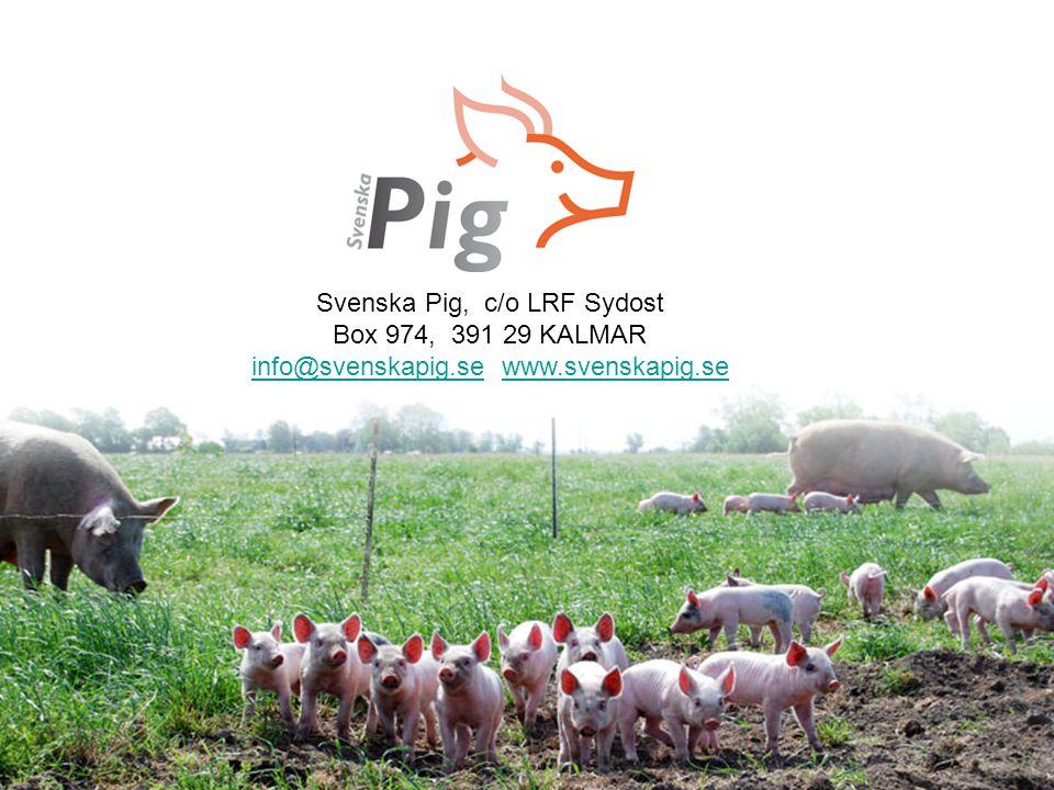 Svenska Pig, c/o LRF Sydost Box 974, 391 29 KALMAR info@svenskapig.seinfo@svenskapig.se www.svenskapig.sewww.svenskapig.se