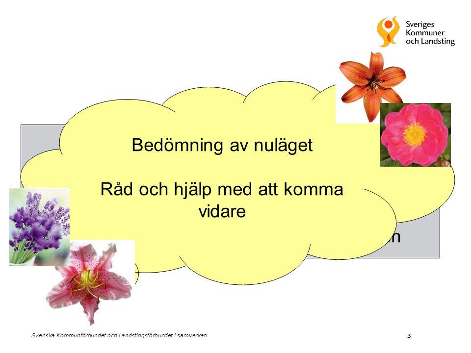 3 Granskning i efterhand Ge upplysning Ledningens sätt att förvalta organisationen Bedömning av nuläget Råd och hjälp med att komma vidare Svenska Kommunförbundet och Landstingsförbundet i samverkan