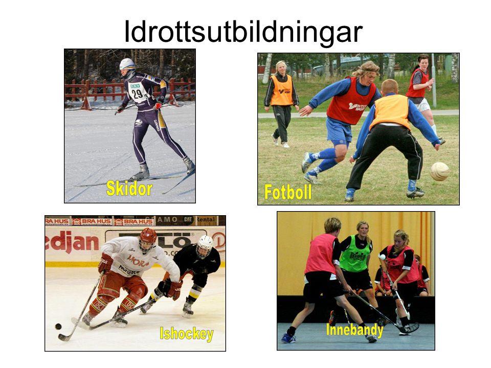 Dagordning •FIKA + Bildspel •1.Välkomna. •-idrottsprofil •2.