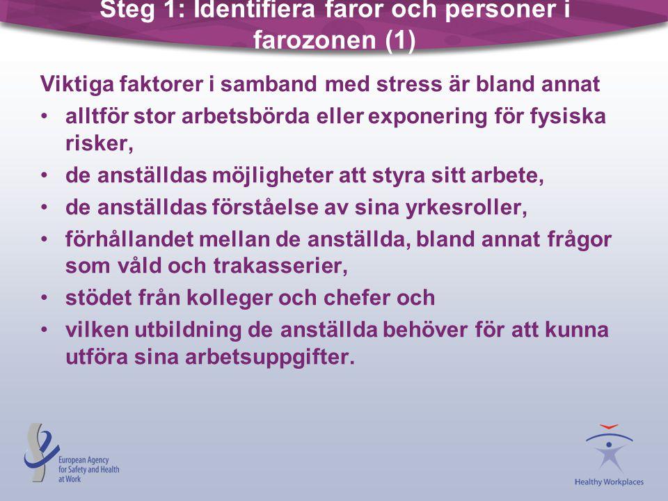 Steg 1: Identifiera faror och personer i farozonen (1) Viktiga faktorer i samband med stress är bland annat •alltför stor arbetsbörda eller exponering
