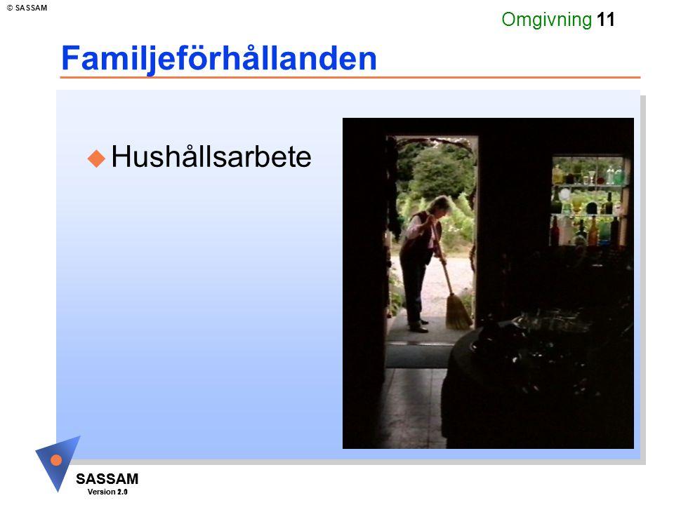SASSAM Version 1.1 © SASSAM SASSAM Version 2.0 Omgivning 11 Familjeförhållanden u Hushållsarbete