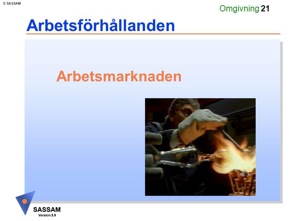 SASSAM Version 1.1 © SASSAM SASSAM Version 2.0 Omgivning 21 Arbetsmarknaden Arbetsförhållanden