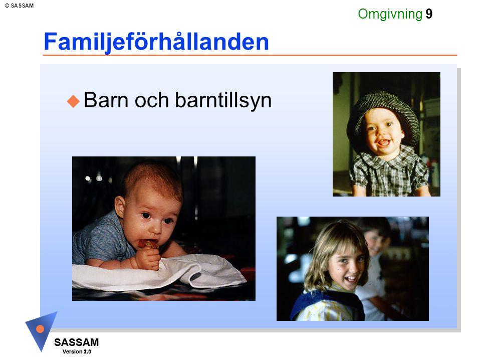 SASSAM Version 1.1 © SASSAM SASSAM Version 2.0 Omgivning 30 Utbildning och kompetens u Utbildnings- och arbetshinder Svårigheter att tala och skriva svenska