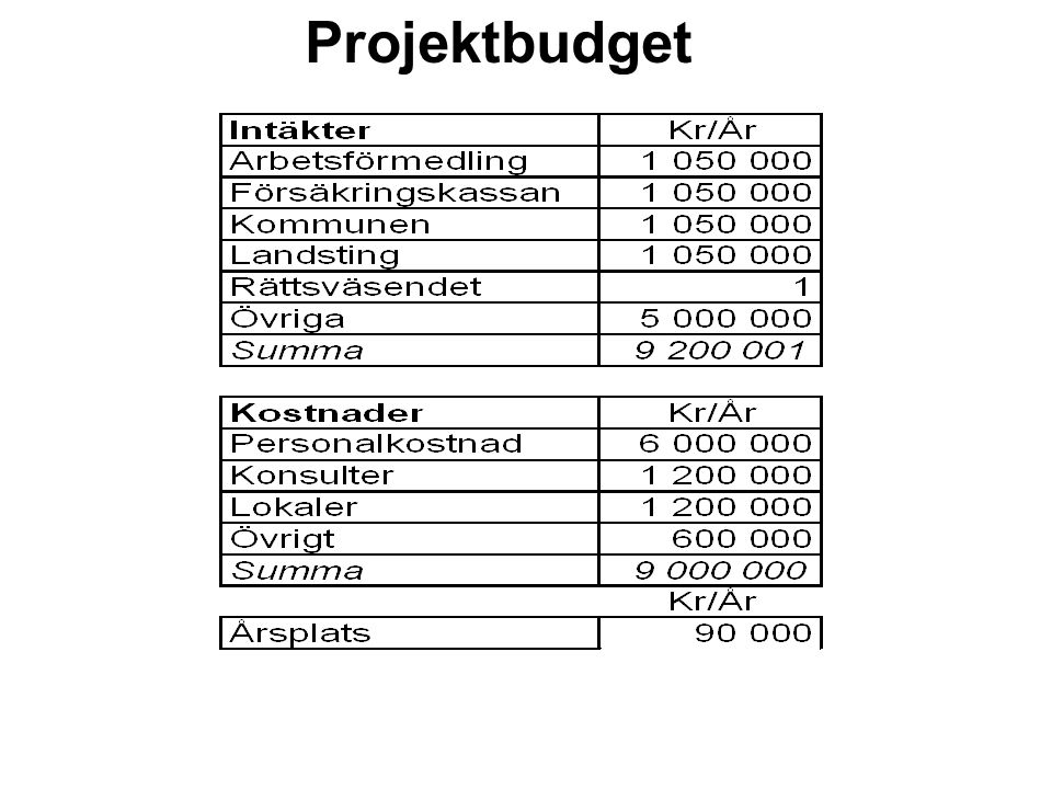 Projektbudget