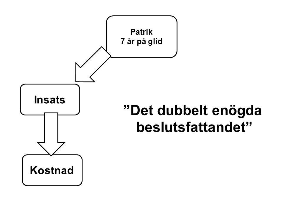 """Patrik 7 år på glid Insats Kostnad """"Det dubbelt enögda beslutsfattandet"""""""