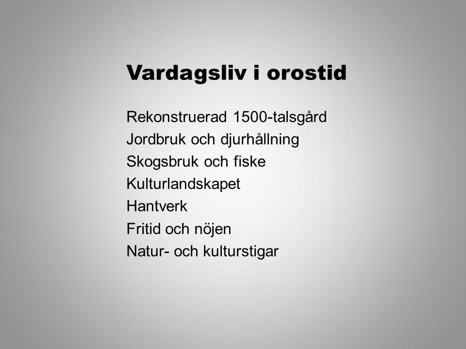 En utställning om UPPROR och KONFLIKT från Kalmarunion till EU Dackefejden Folkliga uppror från medeltid till nutid Varför leder vissa konflikter till våldsamt uppror medan andra löses fredligt.