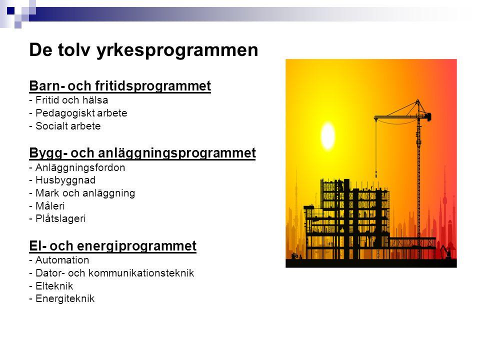 De tolv yrkesprogrammen Barn- och fritidsprogrammet - Fritid och hälsa - Pedagogiskt arbete - Socialt arbete Bygg- och anläggningsprogrammet - Anläggn