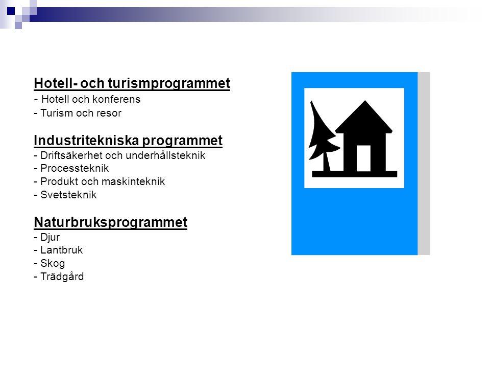 Hotell- och turismprogrammet - Hotell och konferens - Turism och resor Industritekniska programmet - Driftsäkerhet och underhållsteknik - Processtekni