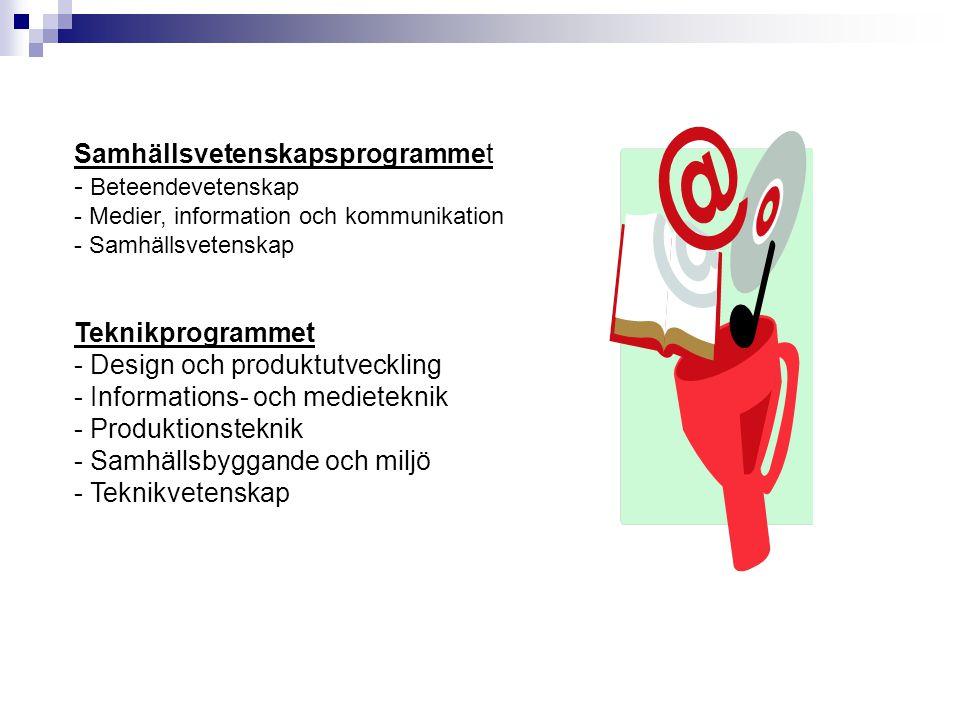De tolv yrkesprogrammen Barn- och fritidsprogrammet - Fritid och hälsa - Pedagogiskt arbete - Socialt arbete Bygg- och anläggningsprogrammet - Anläggningsfordon - Husbyggnad - Mark och anläggning - Måleri - Plåtslageri El- och energiprogrammet - Automation - Dator- och kommunikationsteknik - Elteknik - Energiteknik