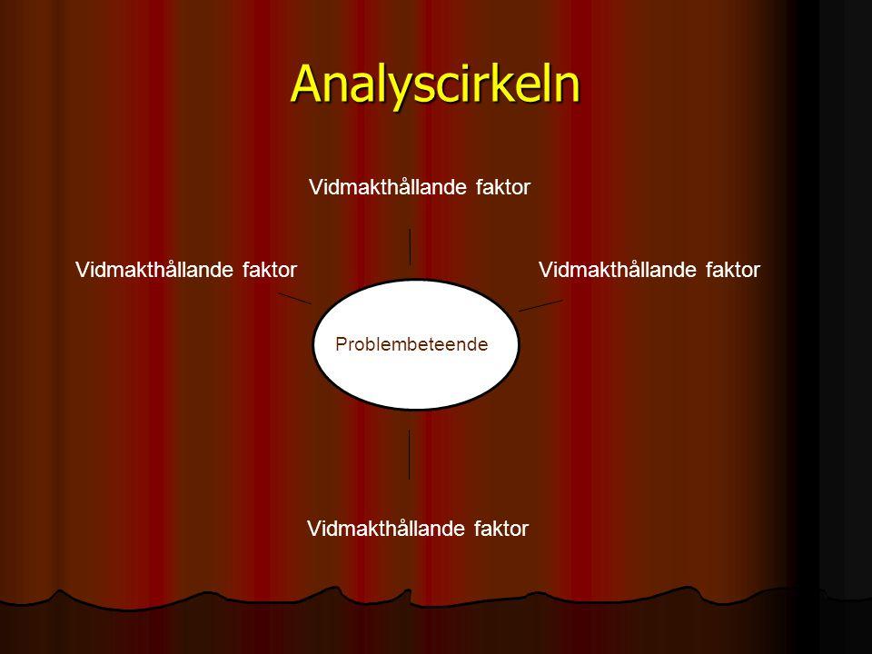 Analyscirkeln P roblematferd Vidmakthållande faktor Problembeteende