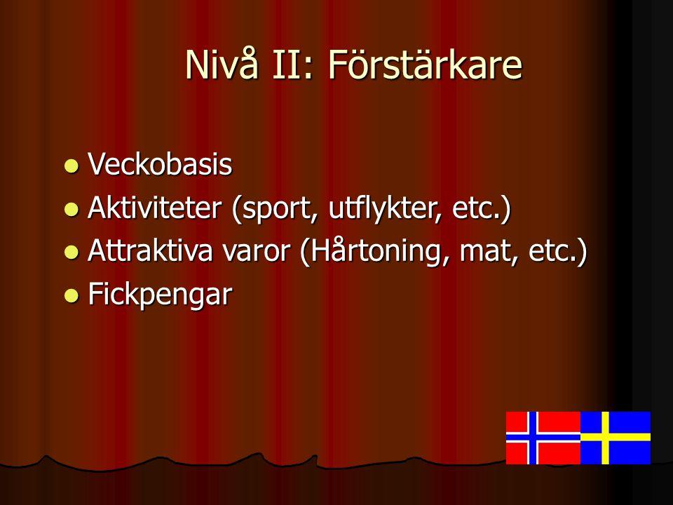  Veckobasis  Aktiviteter (sport, utflykter, etc.)  Attraktiva varor (Hårtoning, mat, etc.)  Fickpengar Nivå II: Förstärkare